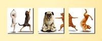 beautiful dog pictures - Contemporary Beautiful Animal Lovely Dog Picture Giclee Print On Canvas Wall Decor Set30176