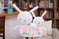 Wholesale HotDescendants of the sun Rabbit fox The best gift for children Plush toys doll Hold pillow Cartoon dolls White brownSale
