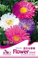 asters flowers - Flower Golf China aster Seeds Original Package Garden bonsai Flowers Seeds Easy Grow medicinal herb seeds bags per