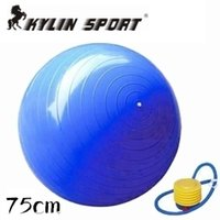 Wholesale 2015 Hot Selling High Quality Home Balance Trainer Yoga Pilates Fitness GYM Exercise Ball with Pump Shipping By CPAM