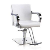 Wholesale Hairdressing chair salon styling chair high quality salon styling white fashion chair hair cut chair barber chair