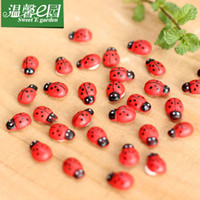 Wholesale Home Decor Micro Landscape Ornaments Wooden Craft Ladybird Beetle Little Ladybug Handmade DIY Accessories mm mm