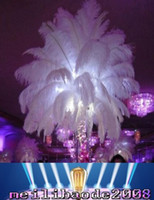 Wholesale 2016 DIY Ostrich Feathers Plume Centerpiece Weddings Party Table Hot Selling cm Wedding decoration New Arrival MYY
