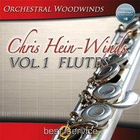 best flutes - Best Service Chris Hein Winds Vol Flutes KONTAKT software source