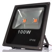 Wholesale 100W Led Floodlight Waterproof IP65 Led grow Light Full Spectrum Flood Light Spotlight for Plants