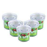 Wholesale Insect Viewer Locket Box Jar Magnifier Bug Magnifying Loupe Watch Toy