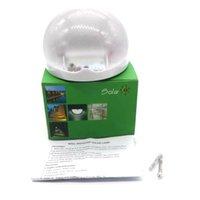 Cheap NEW Arrival 6 LEDs Sensor Solar Powered Light Outdoor Lamp LED Wall Light Garden Lamp Home Stair Waterproof Bulb