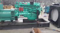 Wholesale Animal fat oil engine electricity generator set Heavy diesel engine electricity generator set