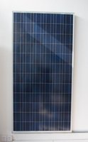 Wholesale high efficiency low price w v solar panel poly