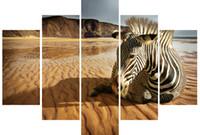 beach animal pictures - LK562 Panels Beach Zebra Sitting Zebra In An Empty Beach Canvas Oil Painting Unframed