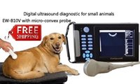 animal veterinary - Handheld Veterinary Ultrasound Scanner EW B10V With Micro Convex Probe C5R10 For Abdominal Cardiac And Reproduction Of Animals