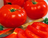 beef tomato - 6000pcs a Set Big Beef Hybrid Tomato Fruit Seed Home Garden Diy Reasonable Choice For You Good Quality