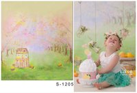 Wholesale P5x6 ft x200cm DZ Photography Backdrops Spring Flower green grass A small house Colorfull Lovely For Baby Photography BackDrops S1205