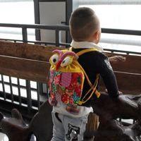 Wholesale Backpack Children School Bag Owl Children Package Kids Girls Fashion