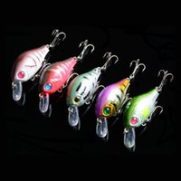 Wholesale New Plastic Fishing Lures Bass CrankBait Crank Bait Tackle D Eye Fishing lures Opp bag packing g cm