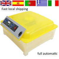 automatic chicken incubator - Top selling transparent Mini full automatic egg incubator chicken egg incubator for sale from Germany