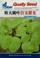 amaranth leaves - 1 original pack g Vegetable seeds Great circle leaves white amaranth Seeds for home garden
