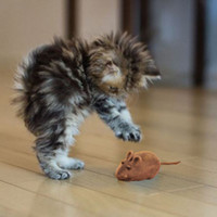 al por mayor pequeños gatos-Pequeño Ratón Juguete Ruido Sonido Ratón Ratón Jugando Regalo Para Gato Gato Jugar A00172 CAD