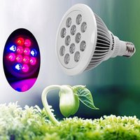 Wholesale Outtled LED Grow Light W W Growing Lamps Growing Light Bulbs for Indoor Indoor Garden Greenhouse Flower Hydroponics