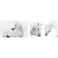 animals horses wallpaper - HWH modern wallpaper panel horse Diy Diamond Painting wall picture wallpaper poster Diamond Embroidery X30CM