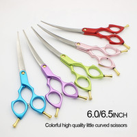 Wholesale Pet curved scissors GENTRY INCH Superior quality Manufacturers