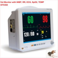Wholesale Cheap Price Veterinary Vet Monitor With ECG RESP SPO2 NIBP TEMP PR HR and ETCO2 Rechargeable Lithium Battery