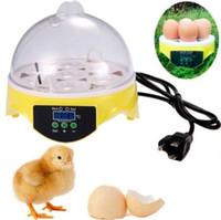 Wholesale Freeshipping Mini Egg Incubator Poultry Bird Pet Hatcher Digital Clear Temperature Control