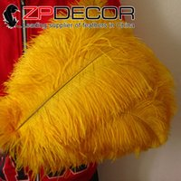 Zhejiang, China (Mainland) best sexy costumes - ZPDECOR Exporting Factory Best Quality cm inch inch Yellow Ostrich Feather for Hot Sexy Ostrich Costume