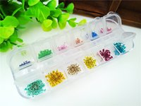 Wholesale small box real dried flowers colors inside babysbreath nail stickers Pressed flowers glass globe vial pendant fillers