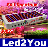 Wholesale Full Spectrum Grow Light Kits W Led Grow Lights Flowering Plant and Hydroponics System Led Plant Lamps AC V