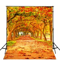 autumn scenery - Digital Printed Background Natural Scenery Wedding Vinyl Backdrops Autumn Leaves Buttonwood Wedding Photo Backdrop