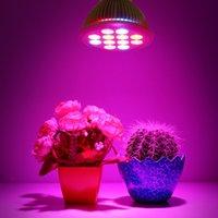 Wholesale 2016 New Full spectrum LED Grow light W E27 LEDs Grow Lamp Bulb Red And Green V V For Flower plant Hydroponics System