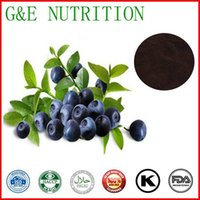 Wholesale Bilberry Extract whortleberry P E g