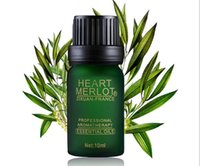 Wholesale Tea Tree Aromatic Compound Herbal Essential Oil Bactericidal Anti virus Natural Aromatherapy Girl Skin Body Beauty SPA Massage Oils