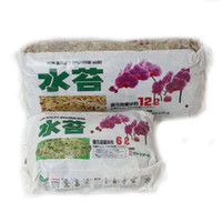 Wholesale 6L and L Garden Supplies Sphagnum Moss Bryophytes Phalaenopsis Orchid Medium Moisturizing Natural soil Organic Fertilizer