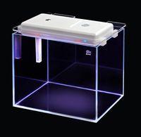 Wholesale Intelligent Aquarium Fish Auto Feeder with led light feeding time setup