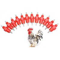 Wholesale 50pcs Nipple Drinker Feeder Water Cups Nipple Chicken Drinkers Waterer Angle Poultry Supplies hv3n