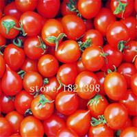 big red tomatoes - Big Promotion pack red pear tomato seeds vegetable seeds for DIY home garden