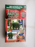 Wholesale set Tomato Patch Easiest Way To Grow Tomatoes Tomatoes Planter