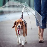Wholesale Fashion Transparent PE Dog Decoration Foldable Umbrella with Leash Diameter cm Keep Pet Dog Dry and Comfotable in Snowing Rian Hiking