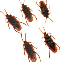 big cockroaches - Slim Mini Prank Funny Trick Joke Toys Special Lifelike Model Simulation Fake Rubber Cockroach Cock Roach Bug Roaches Toy