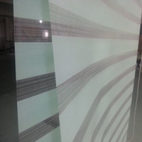 Wholesale Custom Made Shade Translucent Roller Zebra Blinds in Green Curtains for Living Room Colors Are Available H04