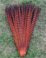 Wholesale cm inch natural pheasant tail feathers Hot