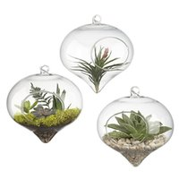 Wholesale Hanging Glass Air Plant Terrarium Stunning Large Teardrop Teardrop Shape Glass hanging Terrarium quot Hanging Terrarium