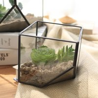 Wholesale Glass Terrarium Cube Fairy Garden House Greenhouse