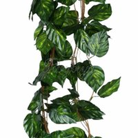 Wholesale 10pcs Artificial Plants Big Leaf Rhodea Ivy Vine Garland Hanging Plants Fake Foliage Flowers Wedding Party Home Garland Decorations feet