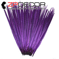 amazing fancy dress - ZPDECOR cm inches Amazing Dyed Purple Cheap Striped Ringneck Pheasant Tail Feathers for Burlesque Fancy Dress Party