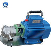 auto waste - WCB p w stainless steel high temperature electric waste gear oil pump auto