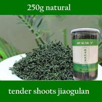 Wholesale Authentic g Tender shoot Gynostemma Pentaphyllum Herbal Tea Jiaogulan Natural Wild Gynostemma Seven Leaves Herbal Tea HT