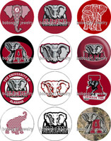 Cheap Free shipping ALABAMA Elephant NCAA glass Snap button Jewelry Charm Popper for Snap Jewelry good quality 12pcs   lot Gl344 jewelry making DI